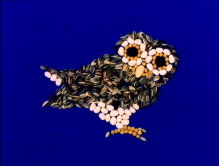 File:OwlSeeds.jpg
