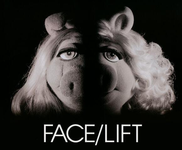 File:Facelift.jpg