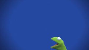 Muppets-com25