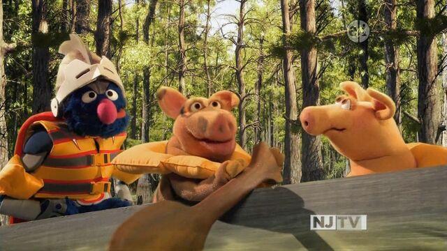 File:SG-Pigs02.jpg