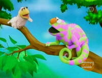 Ewskin-chameleon