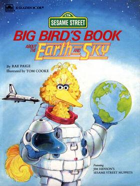 Book.bigbirdearthsky