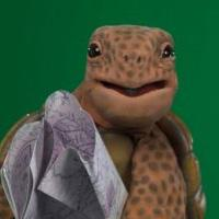 JHAS tortoise