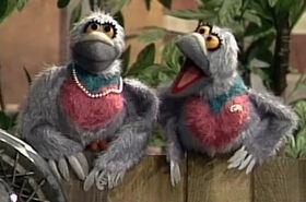 Pigeon-Sisters
