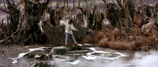 File:Bog of Eternal Stench 06.png