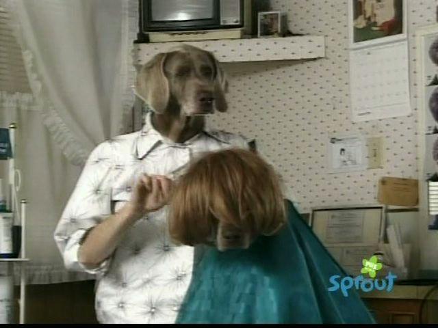 File:Wegmandogs.hairstylist.jpg