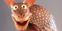 Dooley the Armadillo