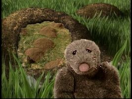 Morely the Mole