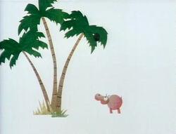 Hippo coconut