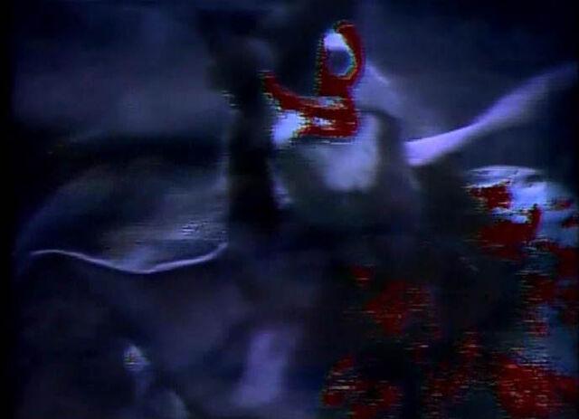 File:Rooster swamp.JPG