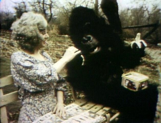 File:GorillaPark-YES.jpg
