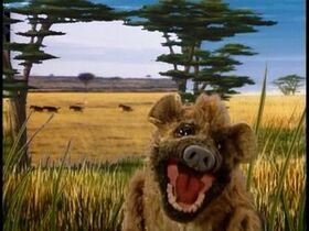 Hyenasong