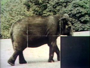 Slidepuzzle.Elephant