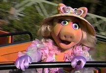 Piggy-eyes-wdw