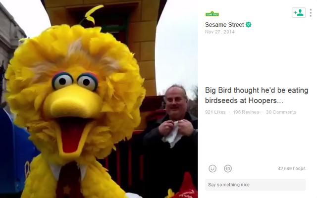 File:Big Bird Thanksgiving 2014 Vine.png