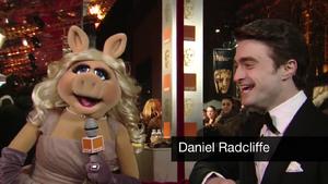BAFTA-Awards-2012-MissPiggy&DanielRadcliffe