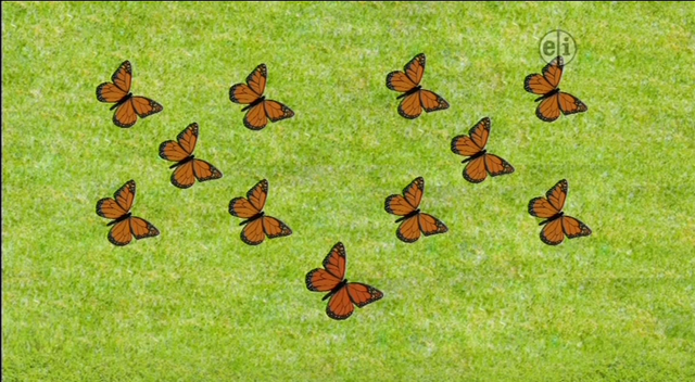 File:11-Butterflies.png