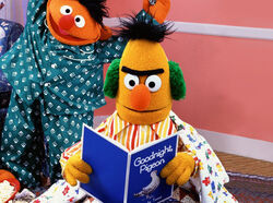 Bert's books Goodnight Pigeon