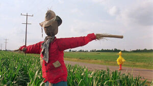 Big Bird scarecrow