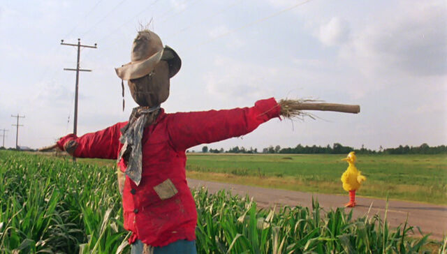 File:Big Bird scarecrow.jpg