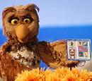 Athena the Owl