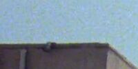 World Wide Studios