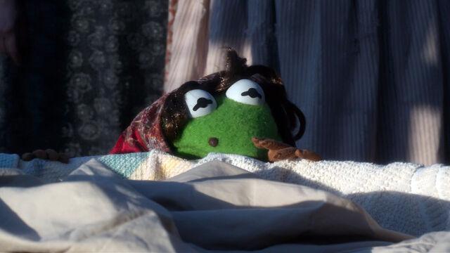 File:Kermit laundry lady MMW.jpg