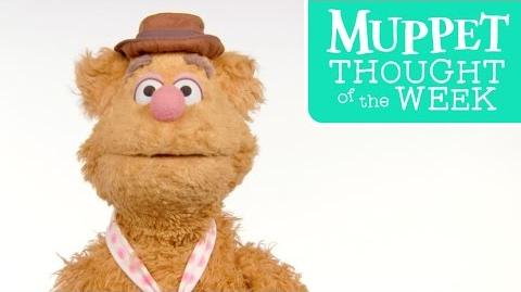 Muppet Thought of the Week ft. Fozzie Bear The Muppets