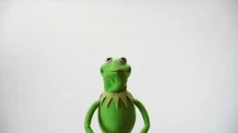 Top 5 Kermit Management Tips
