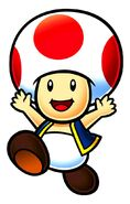 MKS Toad