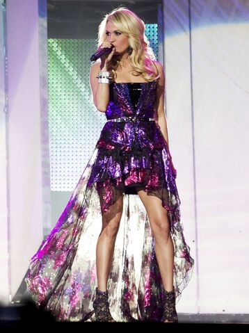 File:Carrie-underwood-blown-away-tour-02.jpg