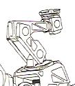 T00 shoulder limb