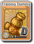 Training Dummy Rare