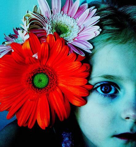 File:Vintage Mermaid Polaroid Effect Large Original.jpg