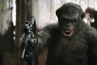 Koba with gun