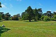220px-San Francisco Botanical Garden Great Lawn 1