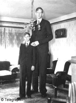File:Wadlow and brother..jpg