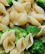 Pasta shells and broccoli