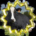 Badge-6851-6.png