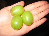 Las uvas grandes verdes en la mano