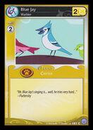 Blue Jay, Warbler