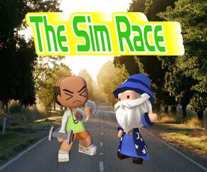 The Sim Race