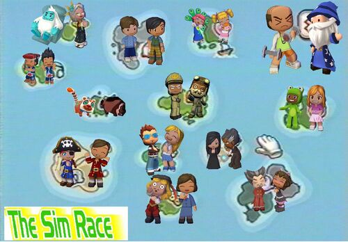 The Sim Race Banner
