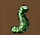 Mammoth Inchworm