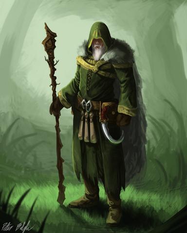File:Druid concept by peterprime-d64aybd.png