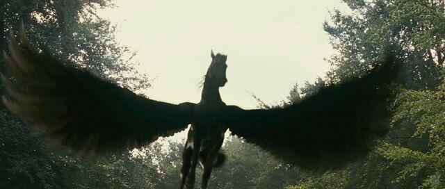 File:Pegasus4.jpg