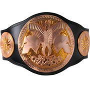 WWE Tag Team Championship 2010
