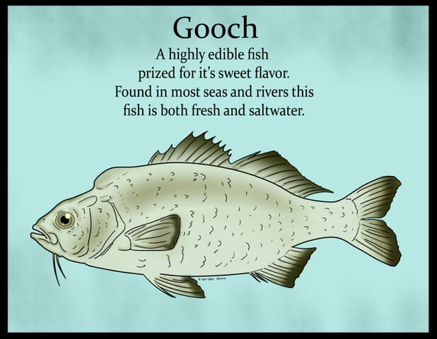 File:Gooch Color.jpg