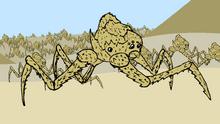 Desert Thorn Spider