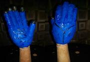 Singhorn hands